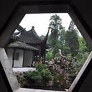 garden view through window (2) by nicolaMY