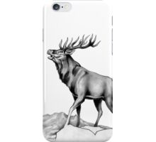 The Challenge iPhone Case/Skin