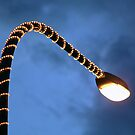 Serpentes by reflexio