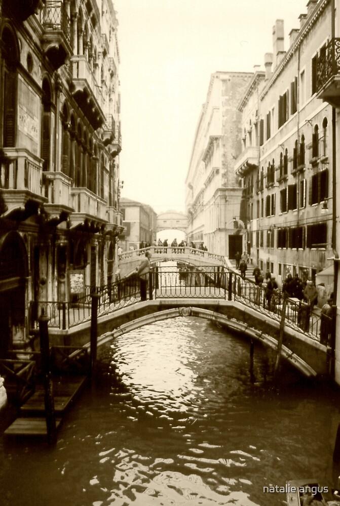 bridges by natalie angus