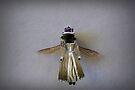 Queen Bee by Susan Littlefield