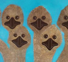 Emu Gathering by Julie  Sutherland