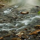 Smoky water by Kelso by Glen Jones