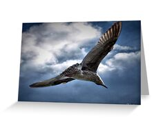 You Are The Wind Beneath My Wings.......... Greeting Card