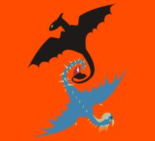 How to Train Your Dragon - Toothless and Stormfly Kids Clothes