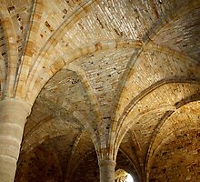 Ancient Ceiling by Emma Williams