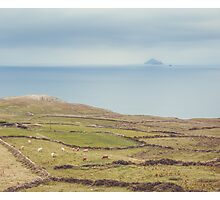 Skellig Islands Photographic Print