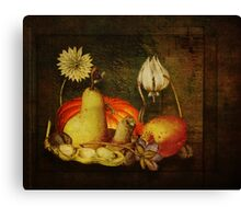 Antique Still Lfe Canvas Print