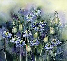 Love In A Mist by artbyrachel