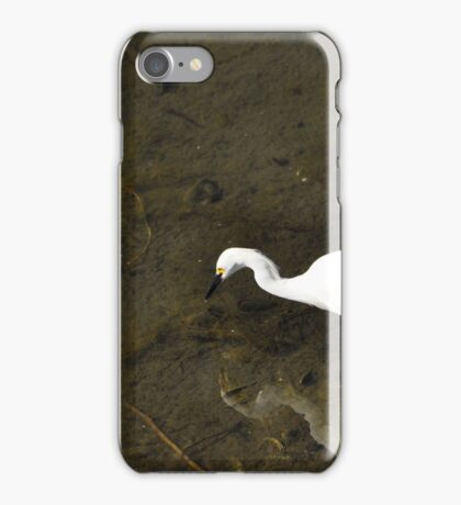 Snowy Egret Hunting iPhone Case/Skin