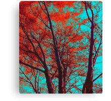 Spiritual Branches Canvas Print
