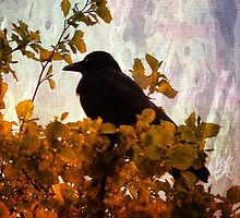 Crow in a Bush by Forfarlass