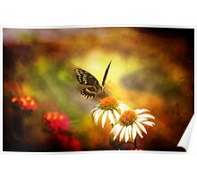 The Butterfly and Its Flower Poster