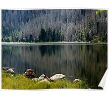 Plešné Jezero Poster
