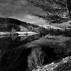 Landscapes in Monochome by Rees Adams