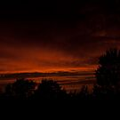 My tonight's sunset... 3 - Haloween night... by steppeland
