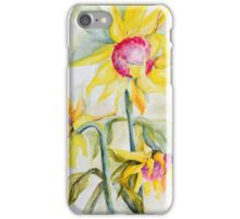 Face Toward the Sunflowers iPhone Case/Skin