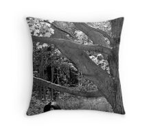 The end of summer part 2 Throw Pillow