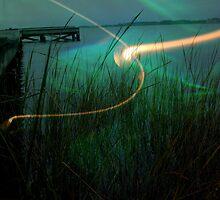 Marsh Invasion  by Zuri Lamper