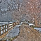 Snowy Lane by Bob Vaughan