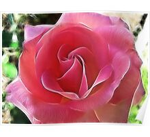 The Breast Cancer Rose Poster