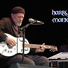Harry Manx @ Jazz & Blues Festival 2010 by muz2142