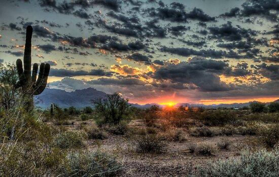 Desert Sunrise  by Saija  Lehtonen