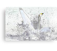 Attitude in white 3/3 (series) Canvas Print