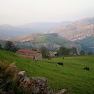 Pastures in Cantabria by Dulcina