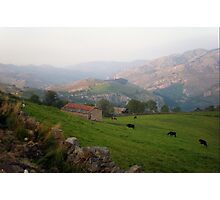 Pastures in Cantabria Photographic Print