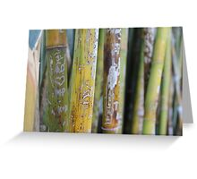 Bamboo Love Notes Greeting Card