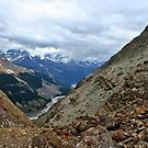 View From the Wilcox Pass Hiking Trail by Vickie Emms