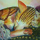 Xinha.  by Marilia Martin