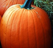 Country Pumpkin  by Mattie Bryant