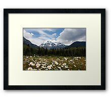 Mt Robson Framed Print