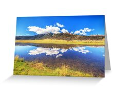 Brilliant reflections of grass Greeting Card