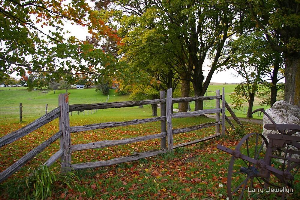 Fence in Fall........ by Larry Llewellyn