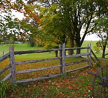 Fence in Fall........ by Larry Llewellyn
