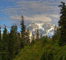 Mt. Shuksan from The Firs Lodge by Barb White