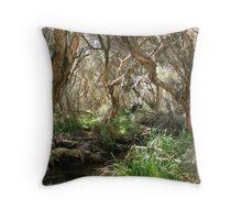 Jim Gordon VC Trail, Gingin Throw Pillow