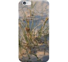 Grass in the Sand iPhone Case/Skin