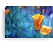 Orange Poppy in a Blue World Metal Print