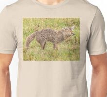 Coyote wet, wild and woolly Unisex T-Shirt