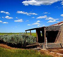 Farm house by Joshua Westendorf