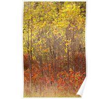 Autumnal Impression_1 Poster