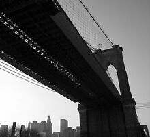winter afternoon, east river, dumbo, nyc by tim buckley | bodhiimages