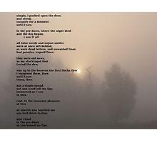 the dawn chorus Photographic Print