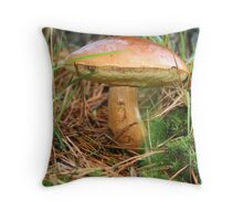 Will inflation hit the Penny Bun? Throw Pillow