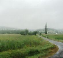 summer rain in Tolna county by almawad