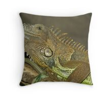Green Iguana (Iguana iguana) Throw Pillow